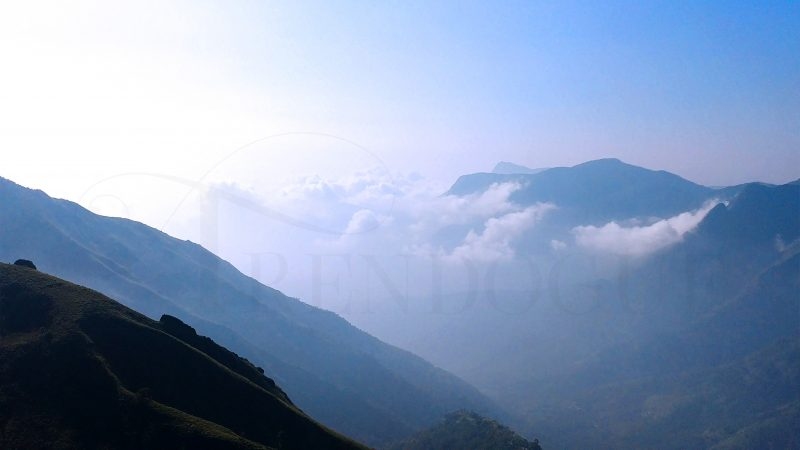 Top-station-munnar